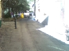 20100724-010